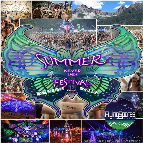 Summer Never Ends Festival